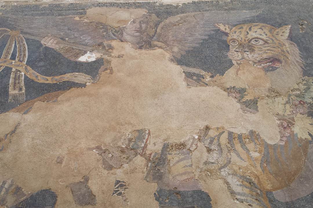 A mosaic of a Roman god and a tiger in Delos