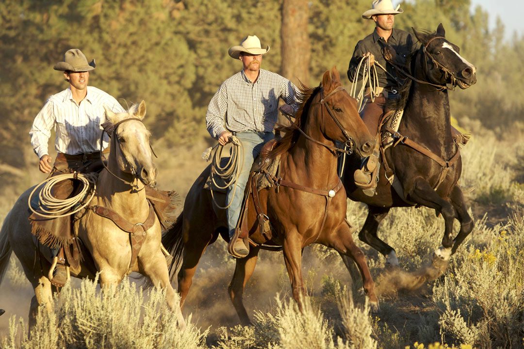 Three cowboys riding their horses through the Hill Country
