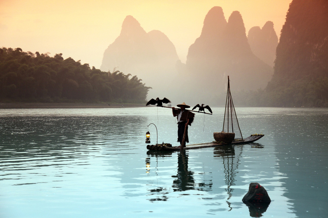 A Chinese fisherman using two birds to catch the fish in Guilin