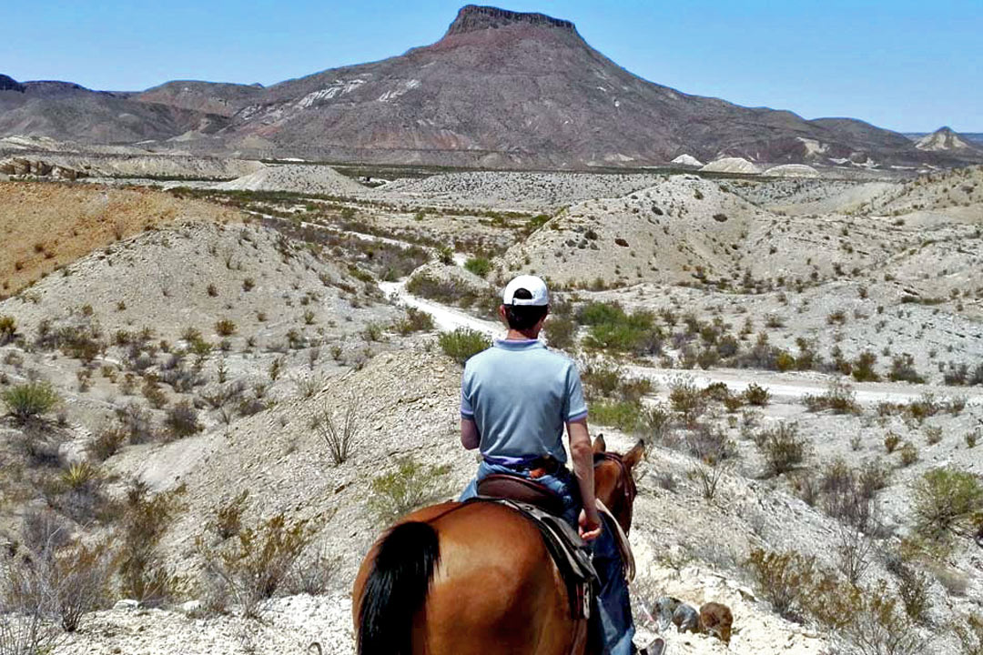 A cowboy on a brown horse overlooking a white and brown desert