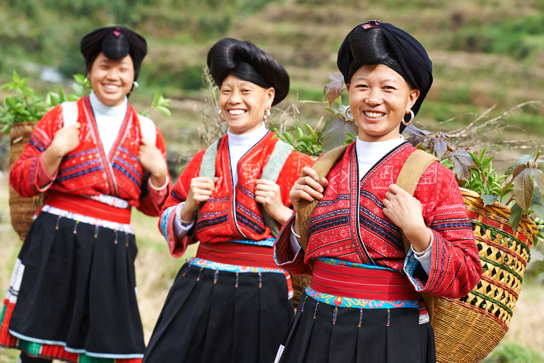 Tribal Yao women with buskets of vegetables on their back and their long hair tied up ontop of their heads