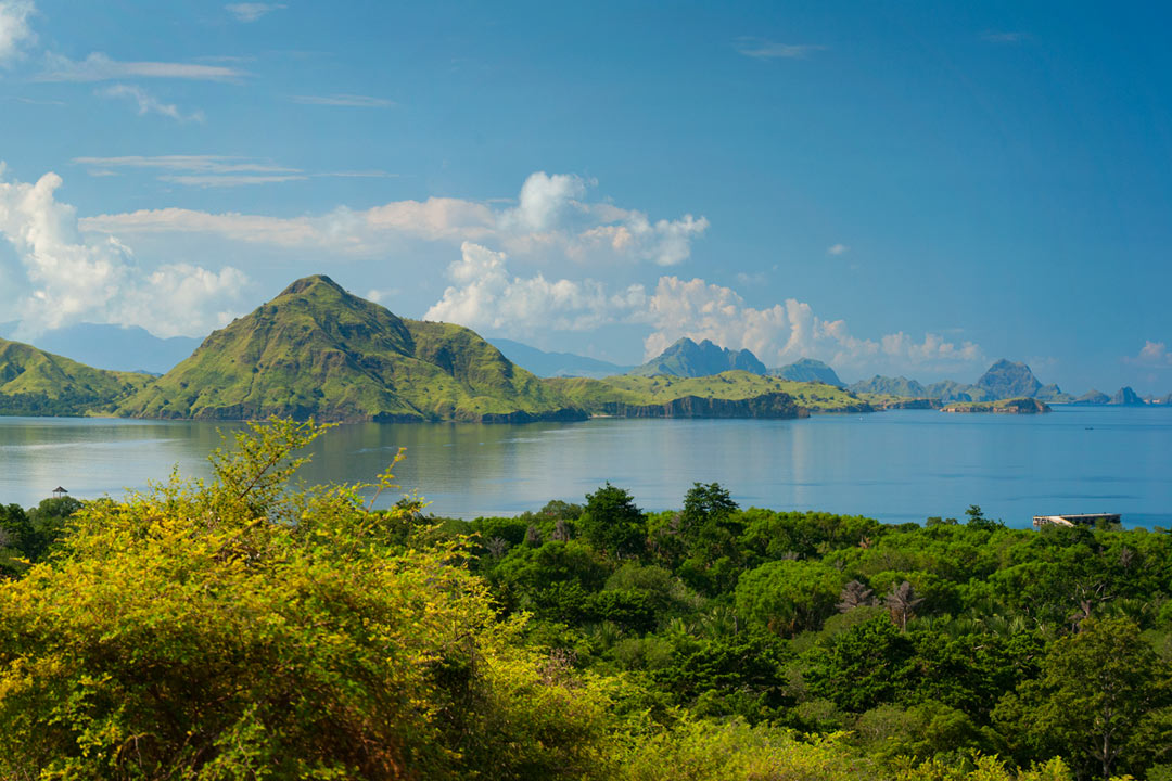 Bright green shrubbery in the foreground, with a beautiful blue sea filled with mountainous yet still vibrantly green islands in the background.