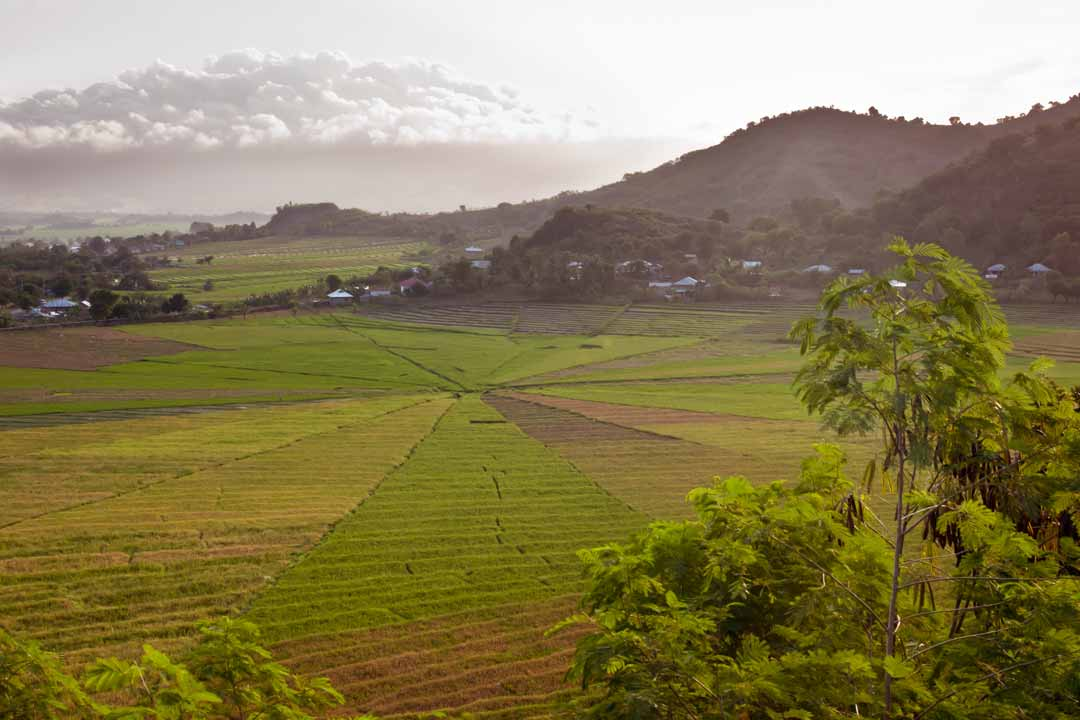 Luscious green rice paddies arranged in a circle stretch into the distance. They are surrounded by small local settlements, with rolling hills and low cloud in the background.