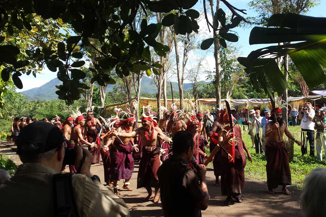 A traditional Indonesian tribal dance. The participants are wearing red and black sarongs. They are wearing long feathers on their heads attached with red cloth. They appear to be dancing down the street and singing