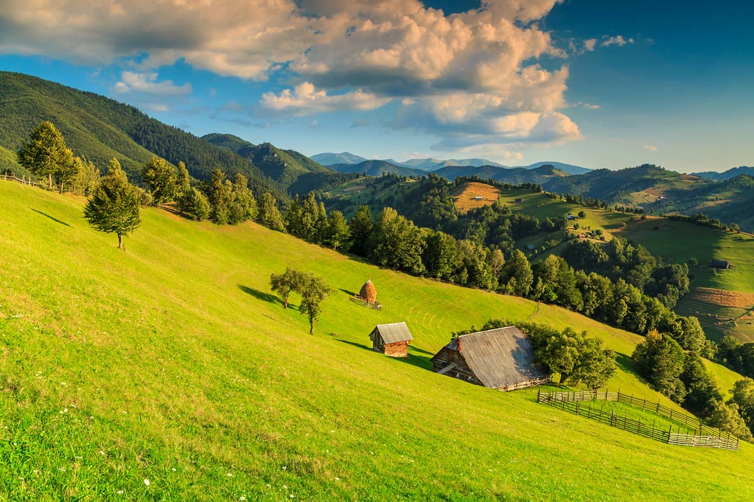 Grassy green slopes descending into a valley wooded with a swiss-roofed barn and shed sitting in the middle