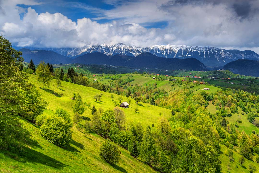 Green hills peppered with trees and farms in the foreground with snow-capped mountains rising in the background