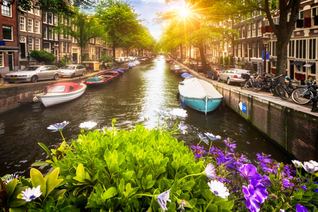 the sun setting on a canal in Amsterdam showing tall townhouses on either side
