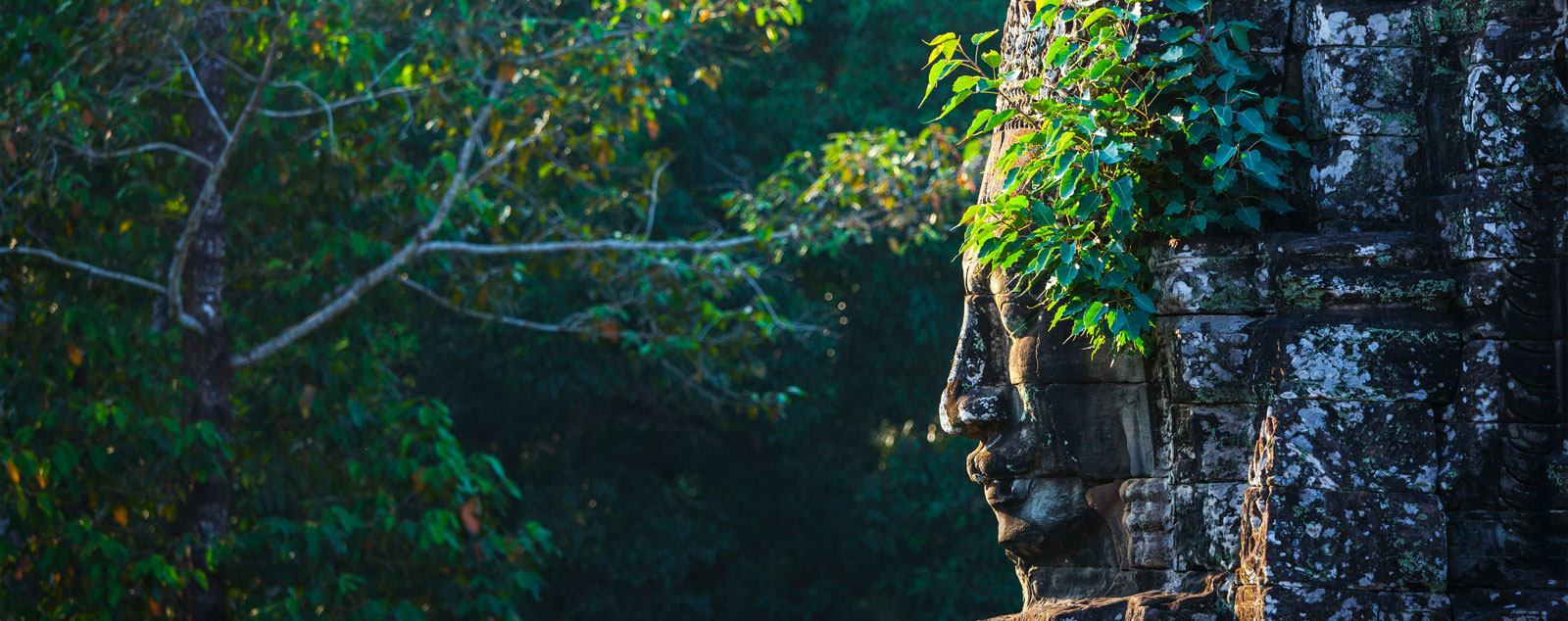 The side of a Khmer head carved from stone on the side of a temple surrounded by green forest
