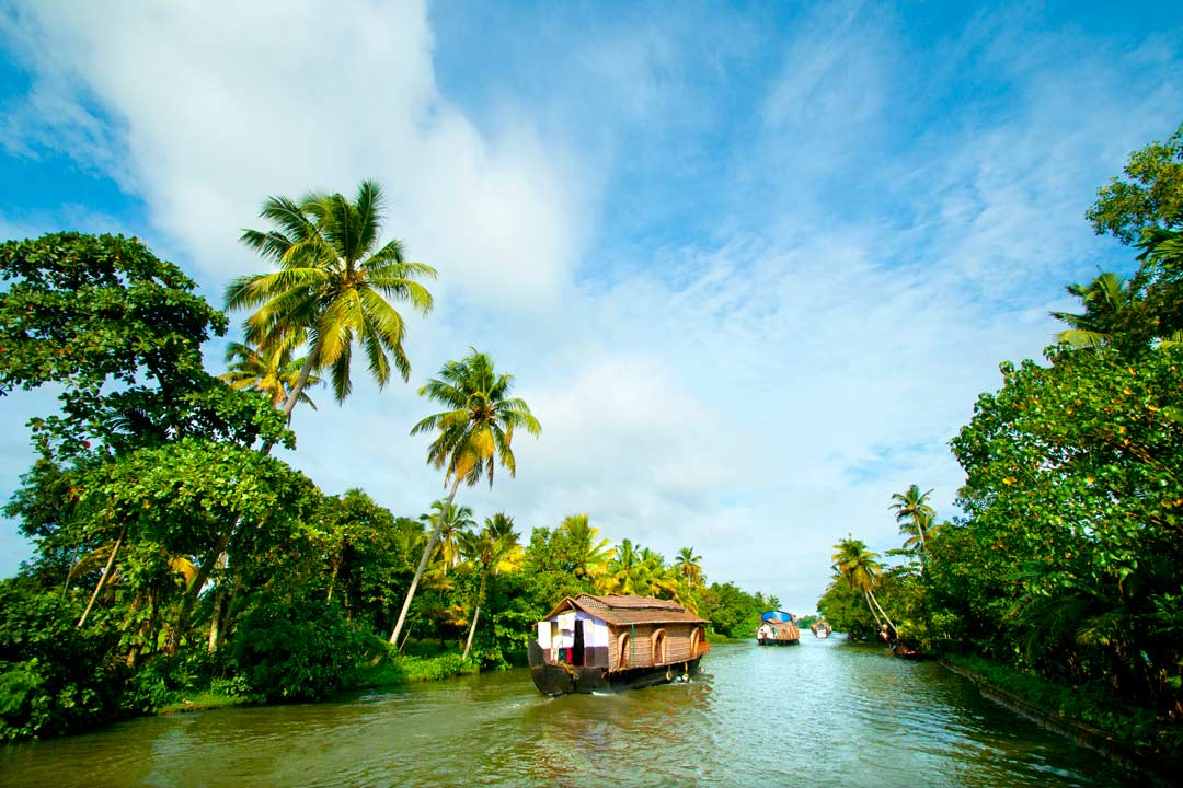A row of houseboats cruising through the Alleppey Backwaters