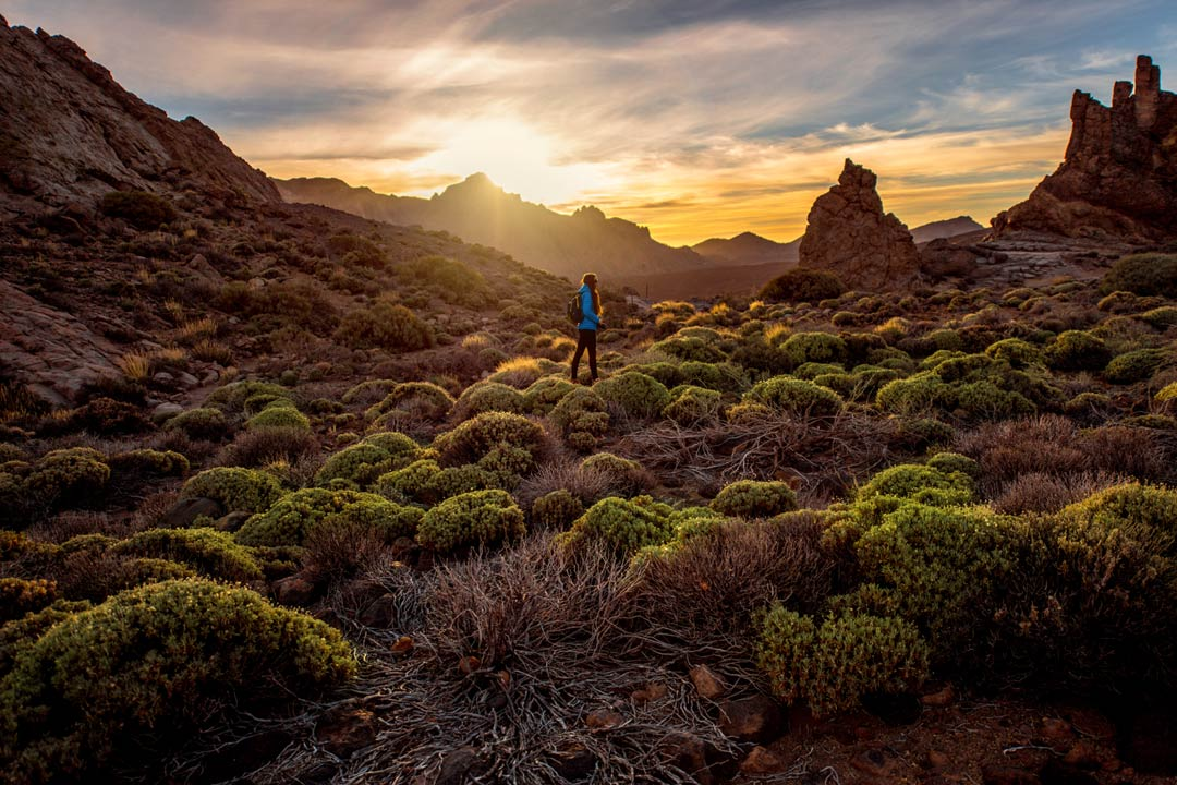 A woman walking through shrubland and rock formations under a yellow sunset