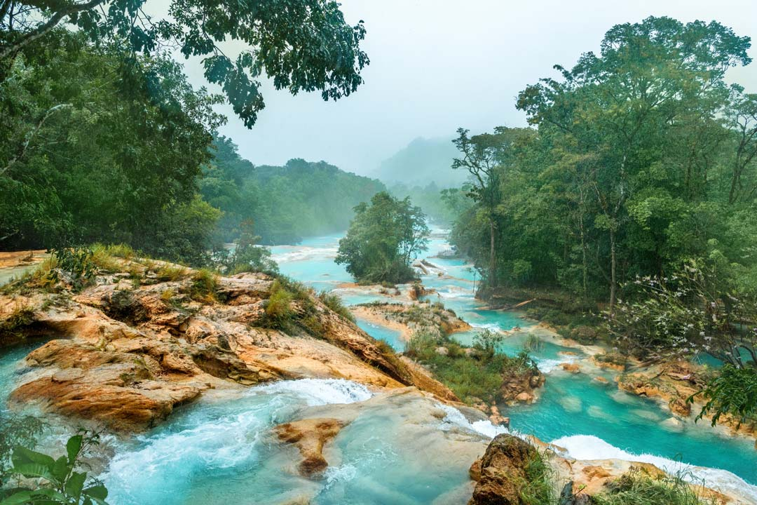 A series of teal coloured pools wind through a green rainforest