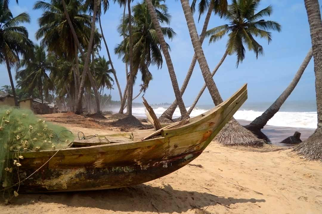 A traditional wooden boat iwth a fishing net in it is laid next to palm trees on the beach