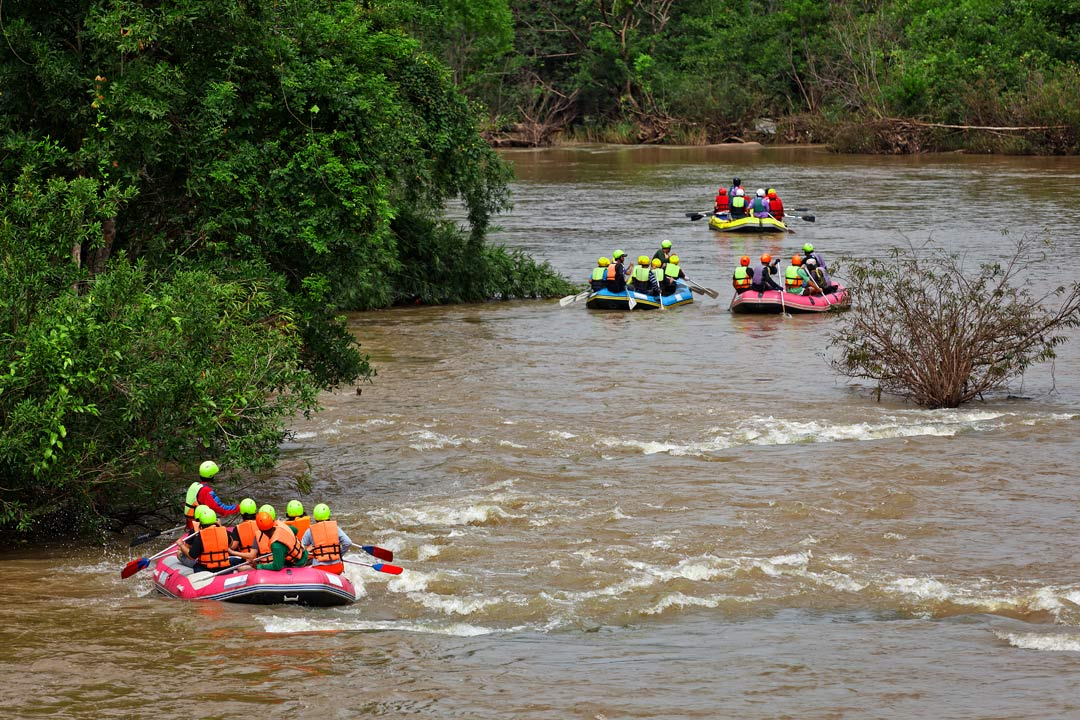 Groups travel down a river, paddling over small rapids and past greenery