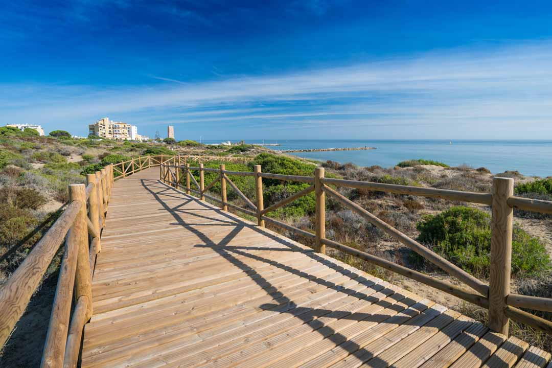 A boardwalk runs along the coast with green bushes lining the coast in front of a pure blue sea