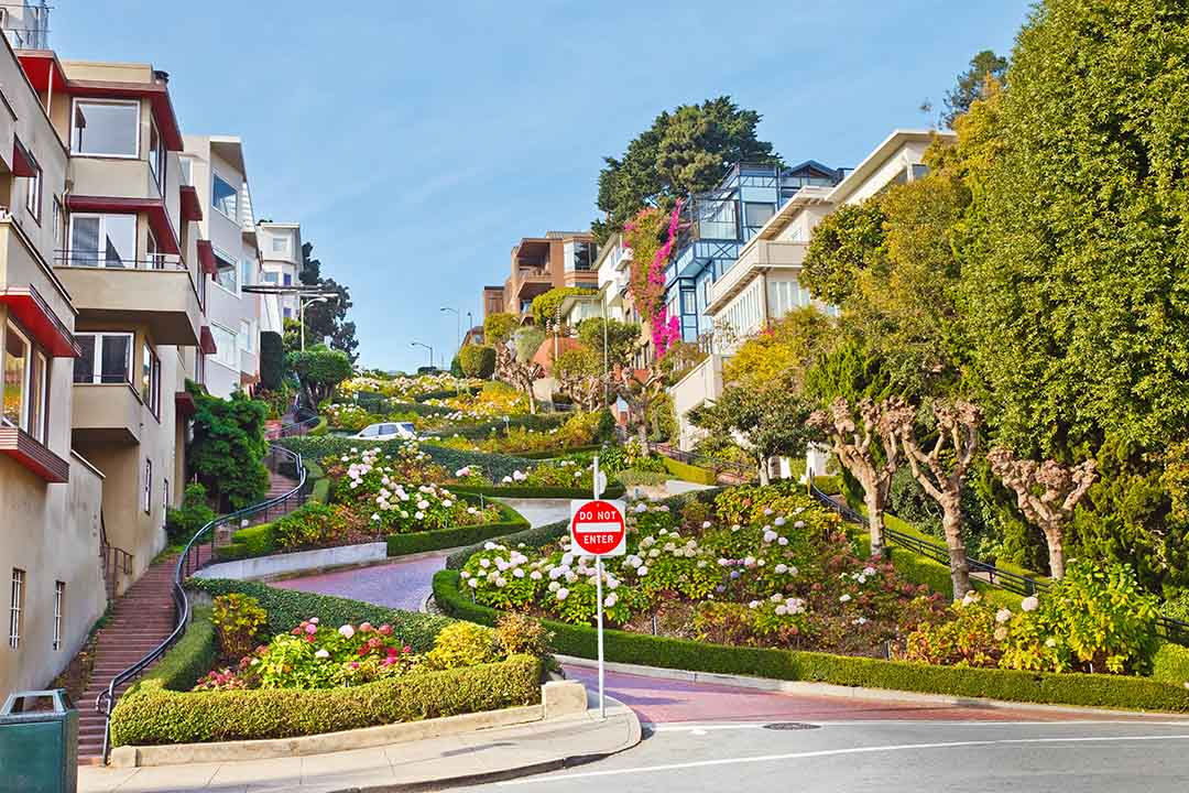 Curved Lombard street and ornate colourful gardens in San Francisco