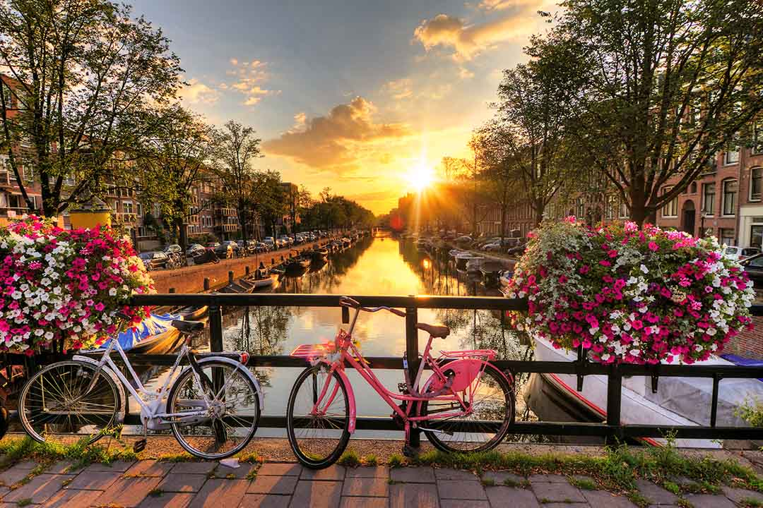 Beautiful sunrise over Amsterdam, with flowers and bicycles on the bridge in spring