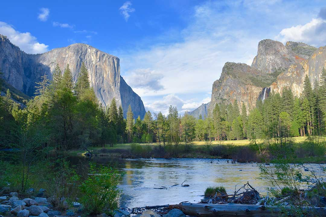 The iconic postcard view of Yosemite Valley. Huge stone rock faces, green trees and a meandering river